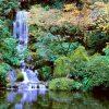 7 Tempat Paling Instagramable di Portland, Amerika Serikat